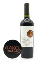 Vina Maipo Vitral Carmenere Reserva 0.75l чилийское вино Винья Майпо Витраль Карменер Резерва 0.75 л.